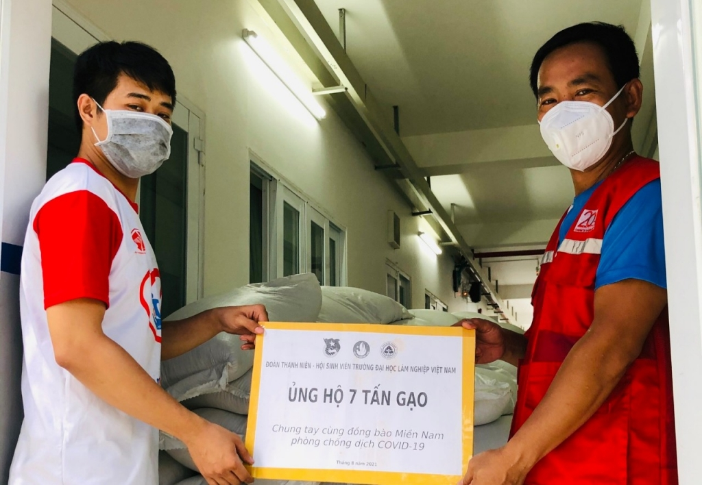 Tuổi trẻ Trường Đại học Lâm nghiệp ủng hộ 7 tấn gạo tới người dân TP Hồ Chí Minh